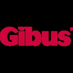 Preventivazione/Progetto Gibus Project